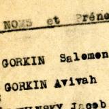 GORKIN Avivah