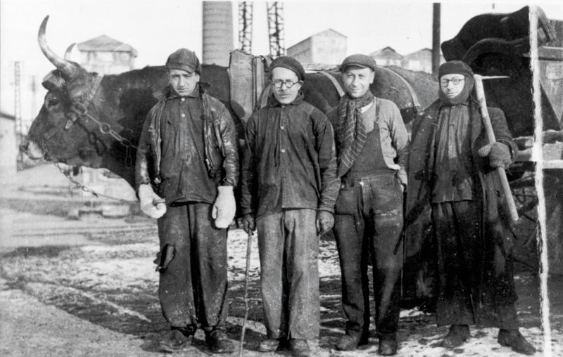Abraham Korenbajzer, premier à gauche, au travail à la sucrerie (sd). Cercil/fonds famille KORENBAJZER